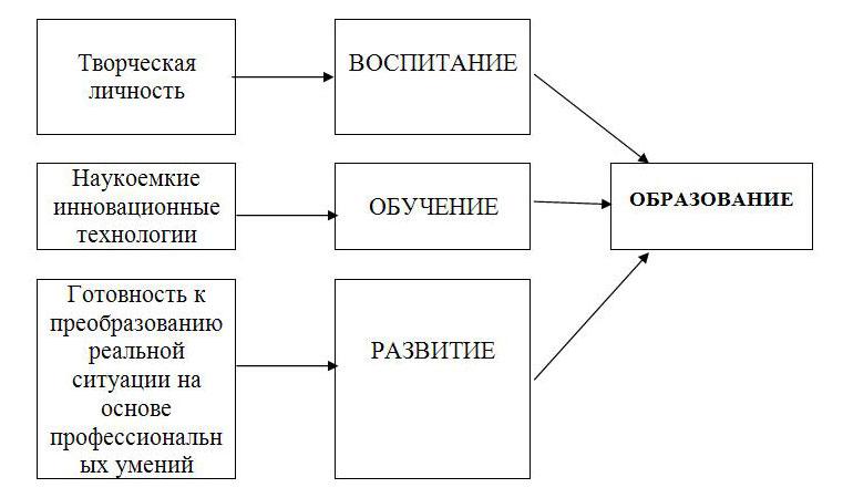 Структура процесса образования